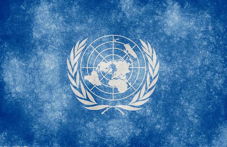 UNOPS Programme Senior Advisor