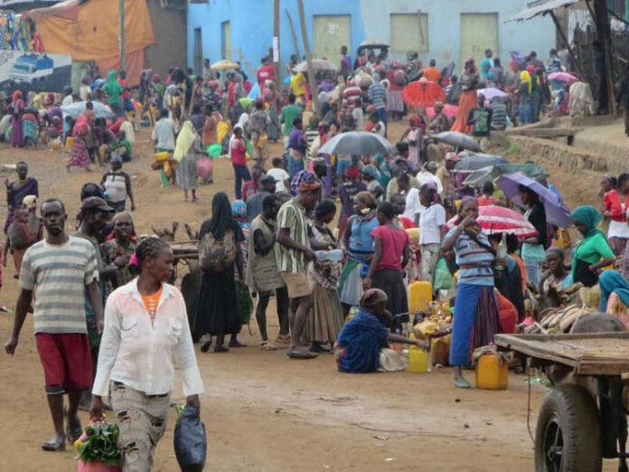 Ethiopia: JCC's Tila Targets 42,000 Direct Jobs