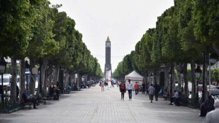 Tunisia: Italy Provides Economic Recovery Support