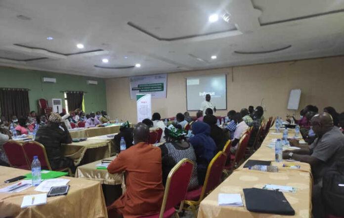 Nigeria: CentreLSD Provides 'Build Project' Update